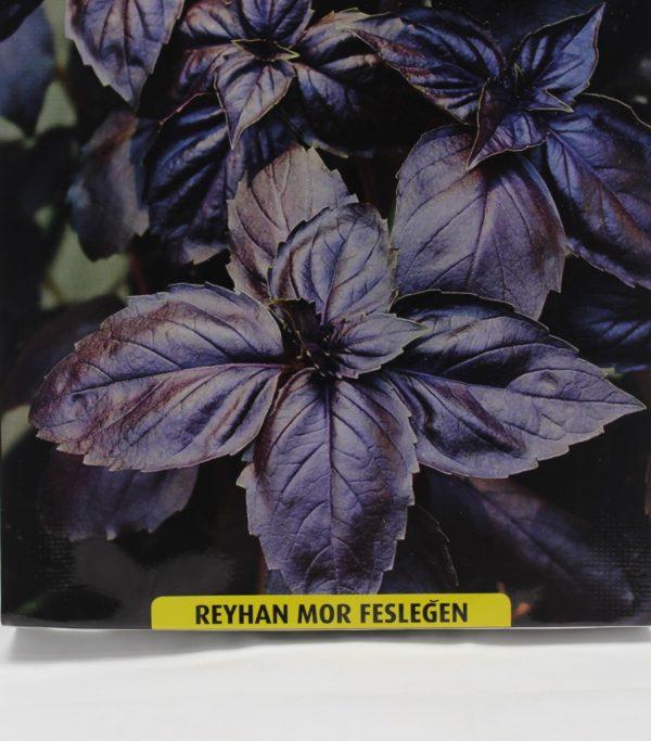 reyhan-mor-tohum
